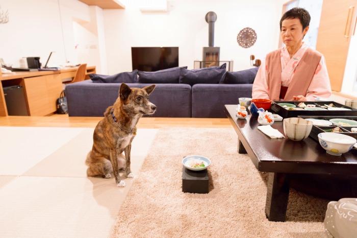 愛犬も本当の家族の一員